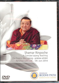 A Concise Lojong Teaching / Die Essenz des Lojong (DVD)